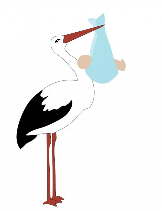 Waiting for the Stork APAS